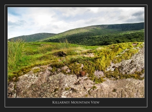 KillarneyMountainView